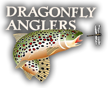 a387b718e Dragonfly Anglers: Crested Butte, CO's Best Fly Fishing Shop